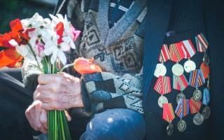 Федеральный закон о ветеранах: статья 16 пункт 1, отпуска и льготы ветеранам боевых действий (с изменениями на 2021 год)